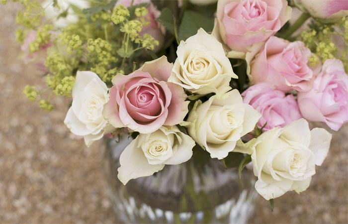 ピンクと白のバラの花