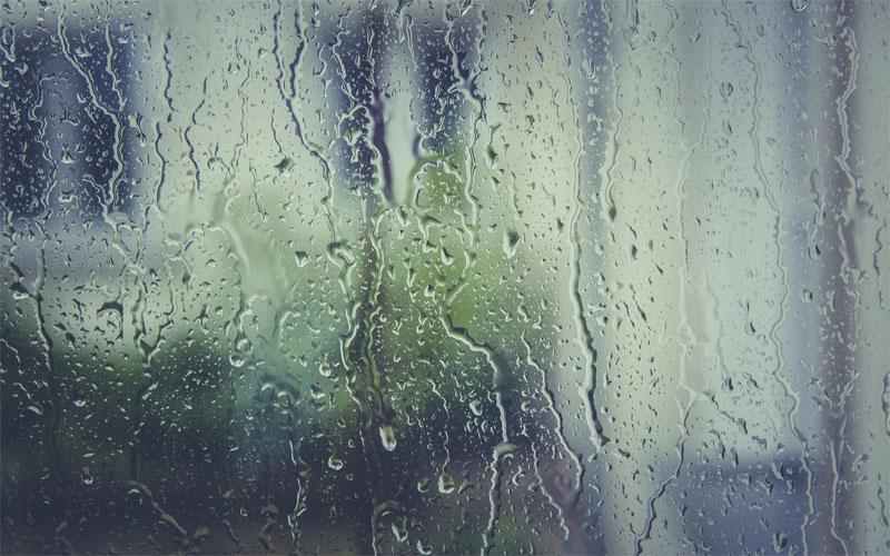ドライフラワーの天敵の1つ目は湿気