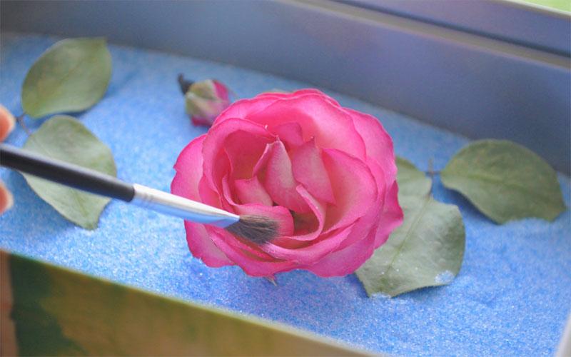 花びらに残っているシリカゲルは筆などではらう。